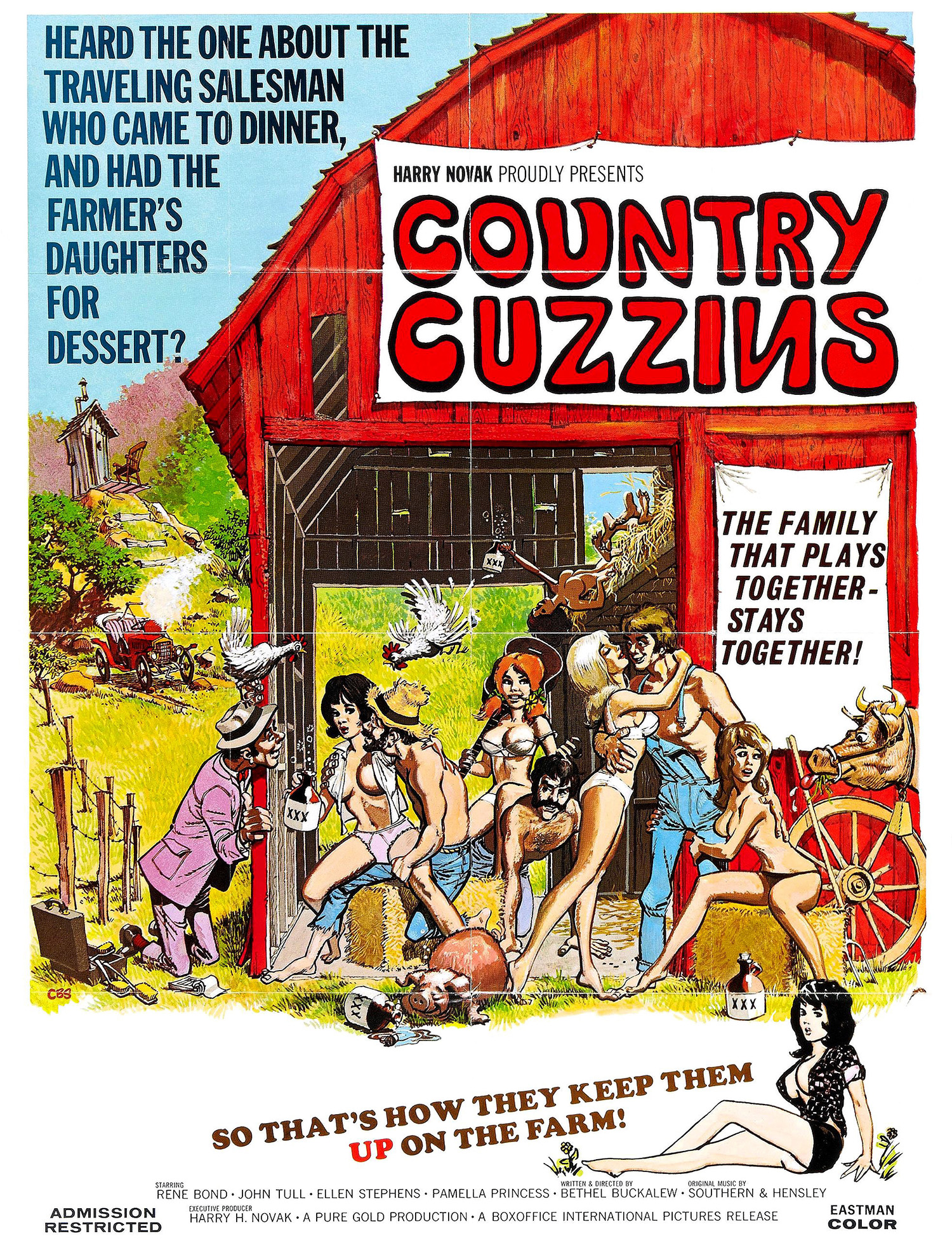 country_cuzzins_poster_01