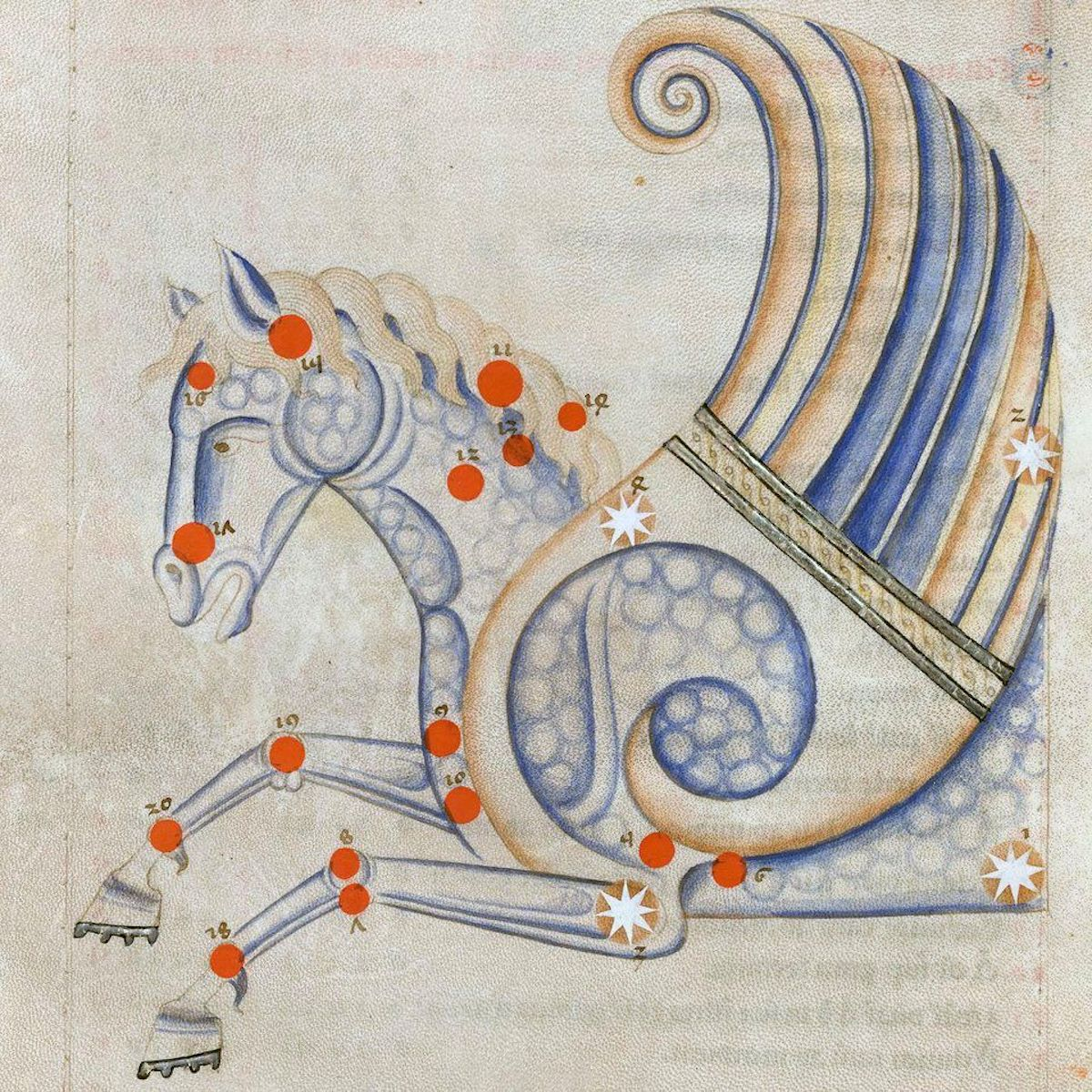 advent 16 Constellation of Pegasus from Sufi Latinus (Latin translation of 'Kitāb al-kawākib al-thābita' of 'Abd al-Rahmān al-Ṣūfī), Bologna 1250-1275 BnF, Arsenal 1036