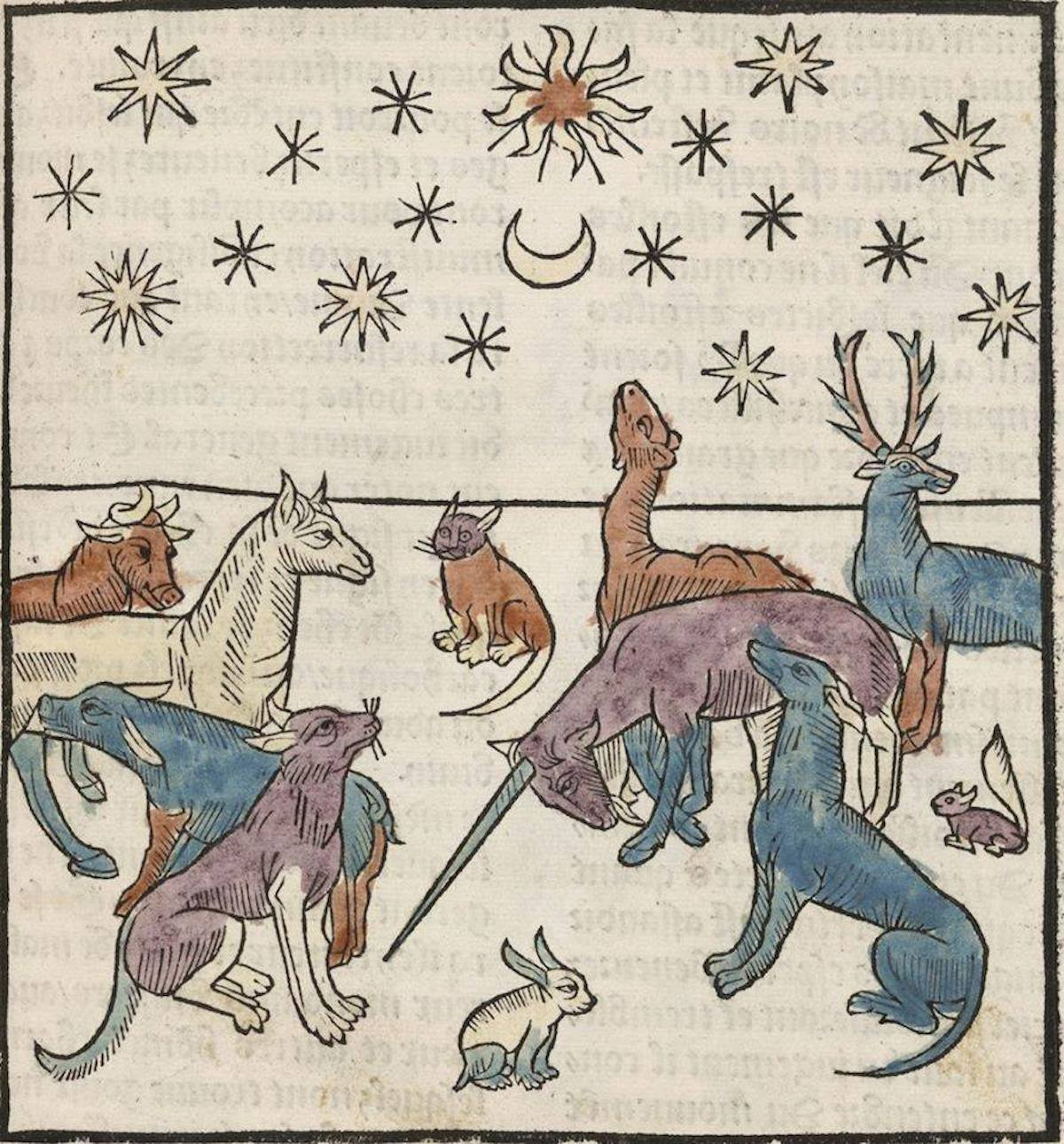 advent 9 Animals under a night sky from Antoine Vérard's 'L'Art de bien vivre et de bien mourir' (The Art of Living Well and of Dying Well) , 1494
