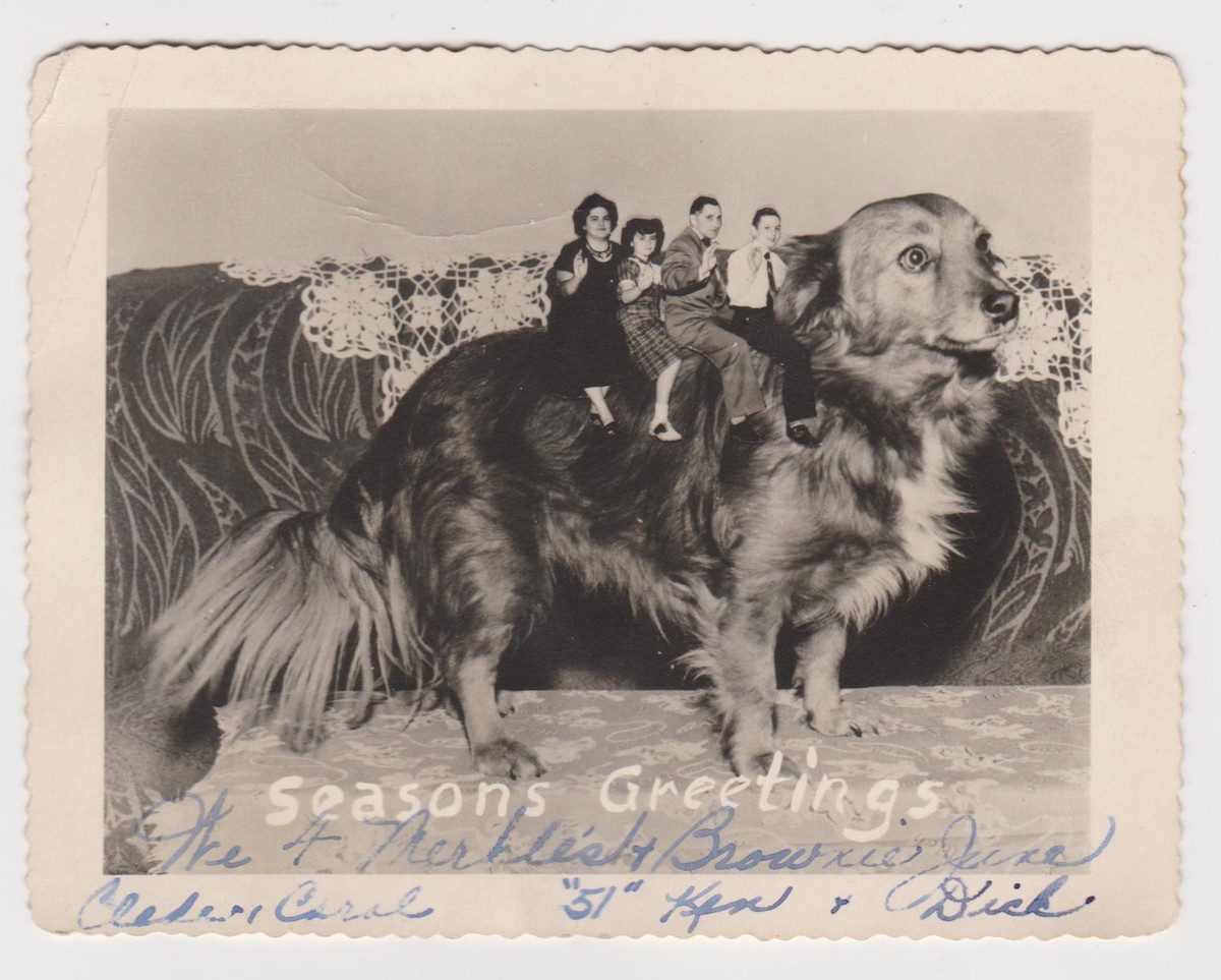 Family pets in fabulous vintage holiday greeting cards flashbak family pets in holiday greeting cards m4hsunfo