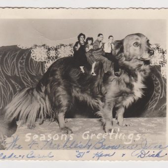 Family Pets in Fabulous Vintage Holiday Greeting Cards