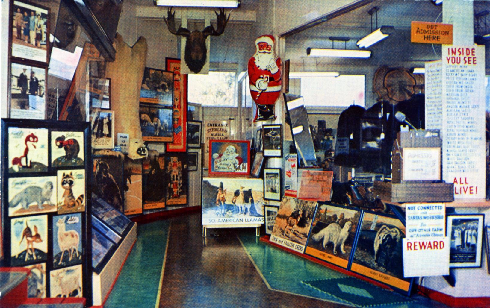 New York Sterling Alaska Fur & Game Farms Entrance Lobby Lake Placid NY Home of St. Nick's Animals See 1000 Fur and Game Alive and Tame 3 farms--Lake Placid, Ausable Chasm, Plattsburg, NY