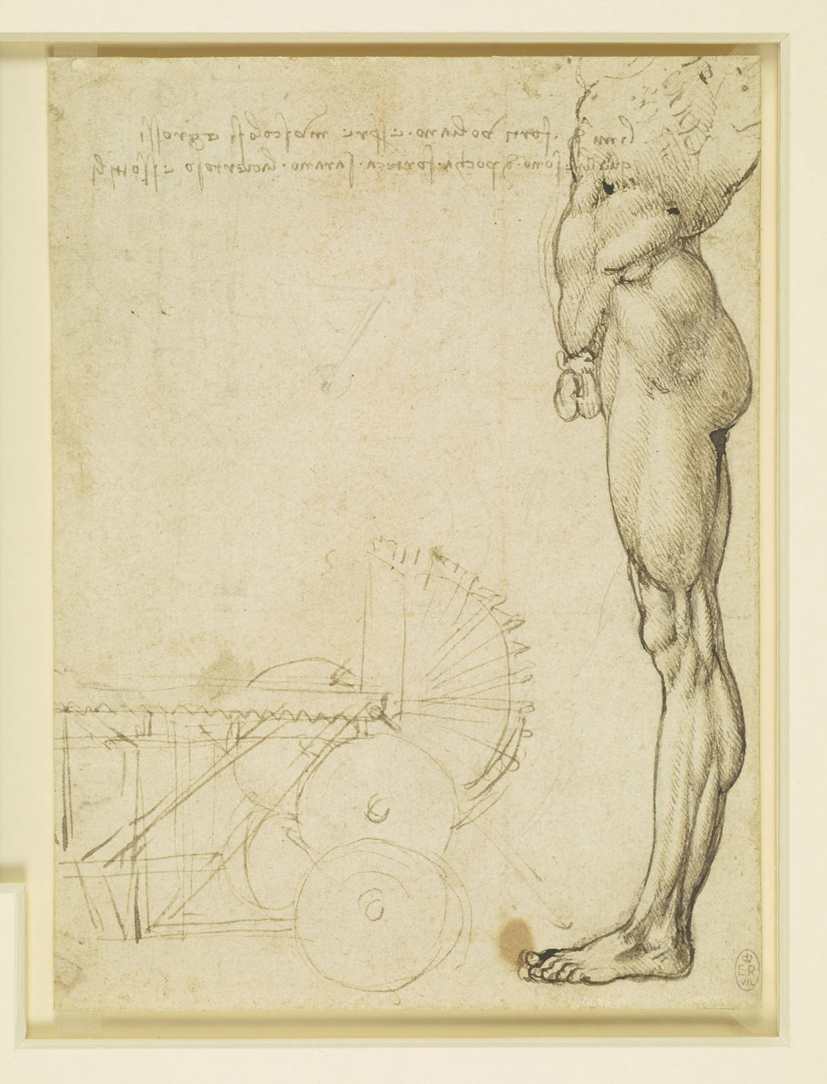 The torso and leg of a nude man in profile, and a study of machinery. 1488