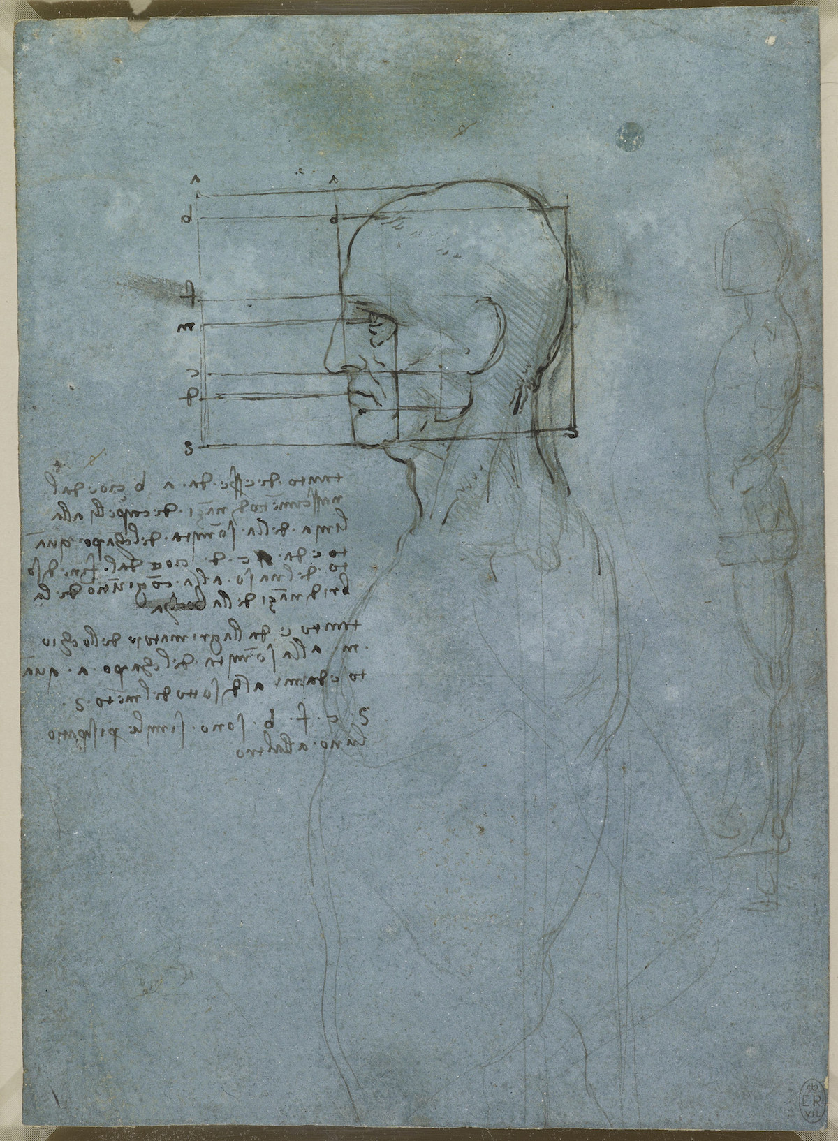 The proportions of the head, and a standing nude c.1490