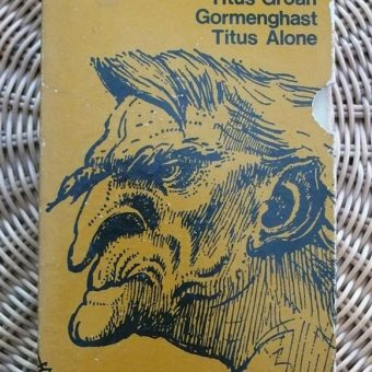 Mervyn Peake's Illustrations For The Gormenghast Trilogy (1970)