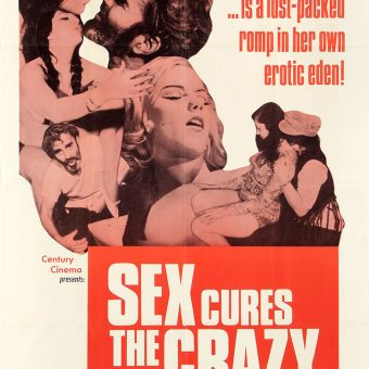 X-rated  Movie Posters of the 1960s and 1970s