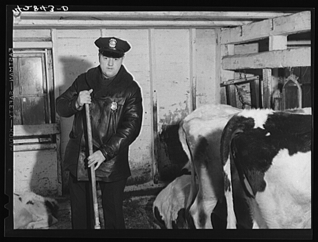 Jack Delano William Green, Raynham, Massachusetts. He lives on a farm with his mother, who has fifteen cows and ten acres of land. Mr. Green has six children and works as a policeman at nearby Camp Edwards Jan 1941