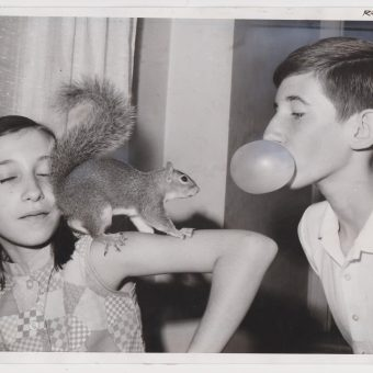 The Joy Of Chewing Gum And Blowing Bubbles – 16 Brilliant Snapshots
