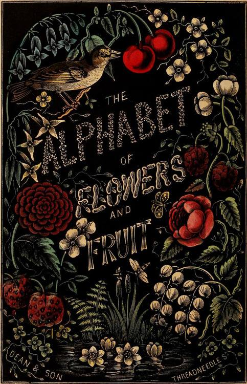 The Alphabet of Flowers and Fruit. London, Dean & Son, 1856