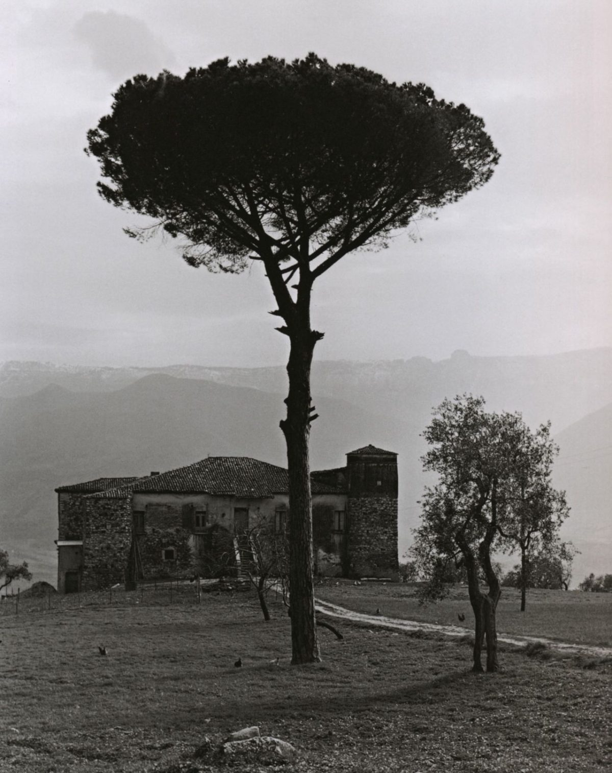 Edwin Smith, Farm in the mountains between Auletta and Potenza, Italy, 1963