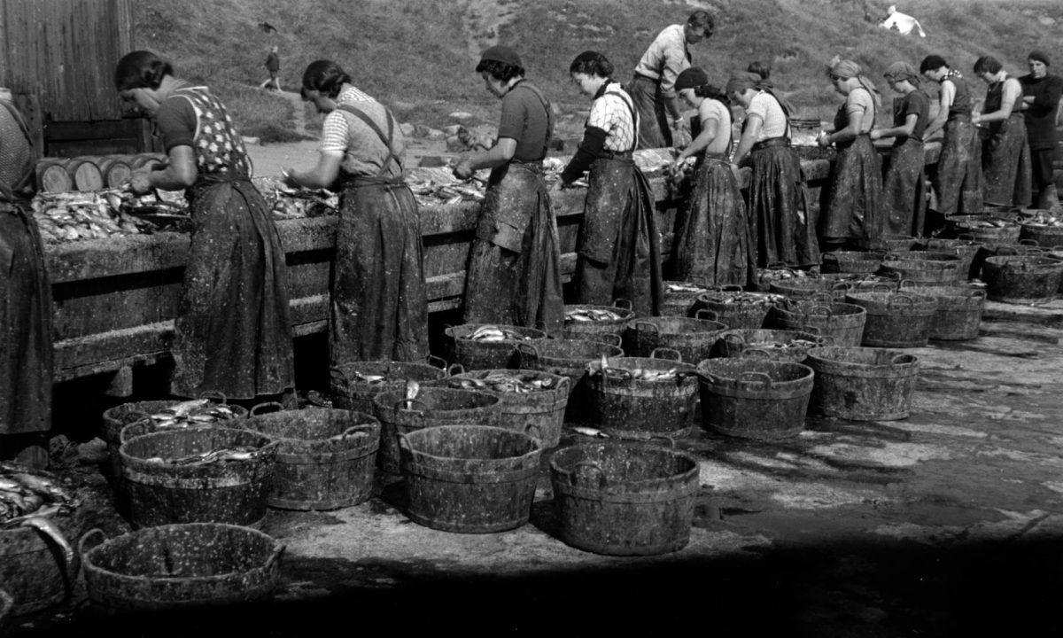 Herring girls gutting fish on the quayside, North Shields, 1930s.