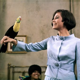"""Take chances, make mistakes. That's How you Grow."" – Pictures of Mary Tyler Moore"
