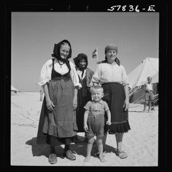 Survivors of The Sinai Express : European Exiles In Egypt (1944)