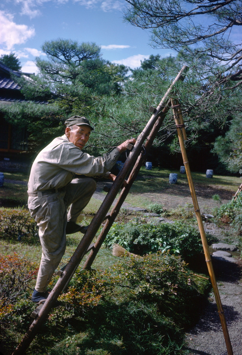 Kyoto, Japan,1962 Kodachrome