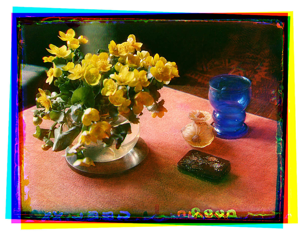Bernard Eilers, still life, flowers, photography
