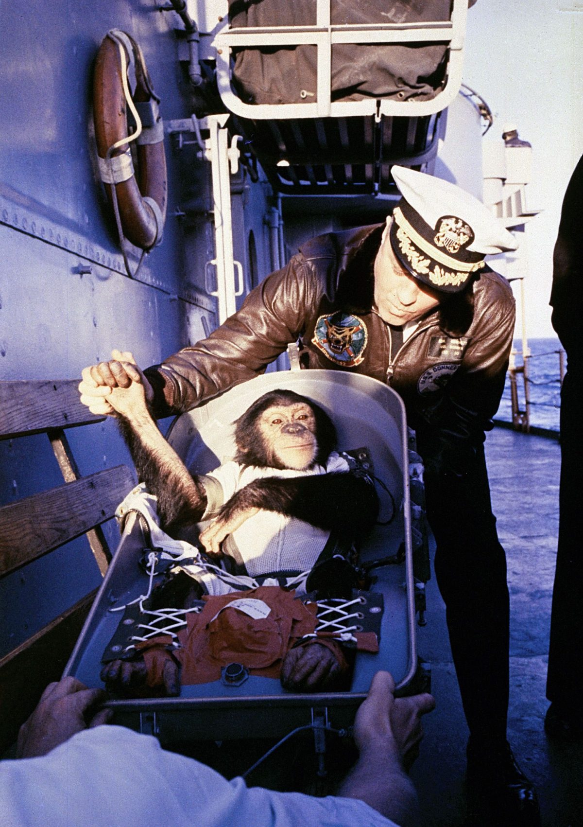 The famous hand shake welcome. Ham the Chimpanzee is greeted by recovery ship Commander after his flight on the Mercury Redstone rocket, January 31, 1961