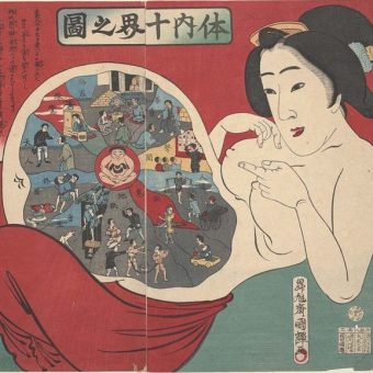 Illustrated Internal Bodily Functions in Japanese Woodcuts – 1800s