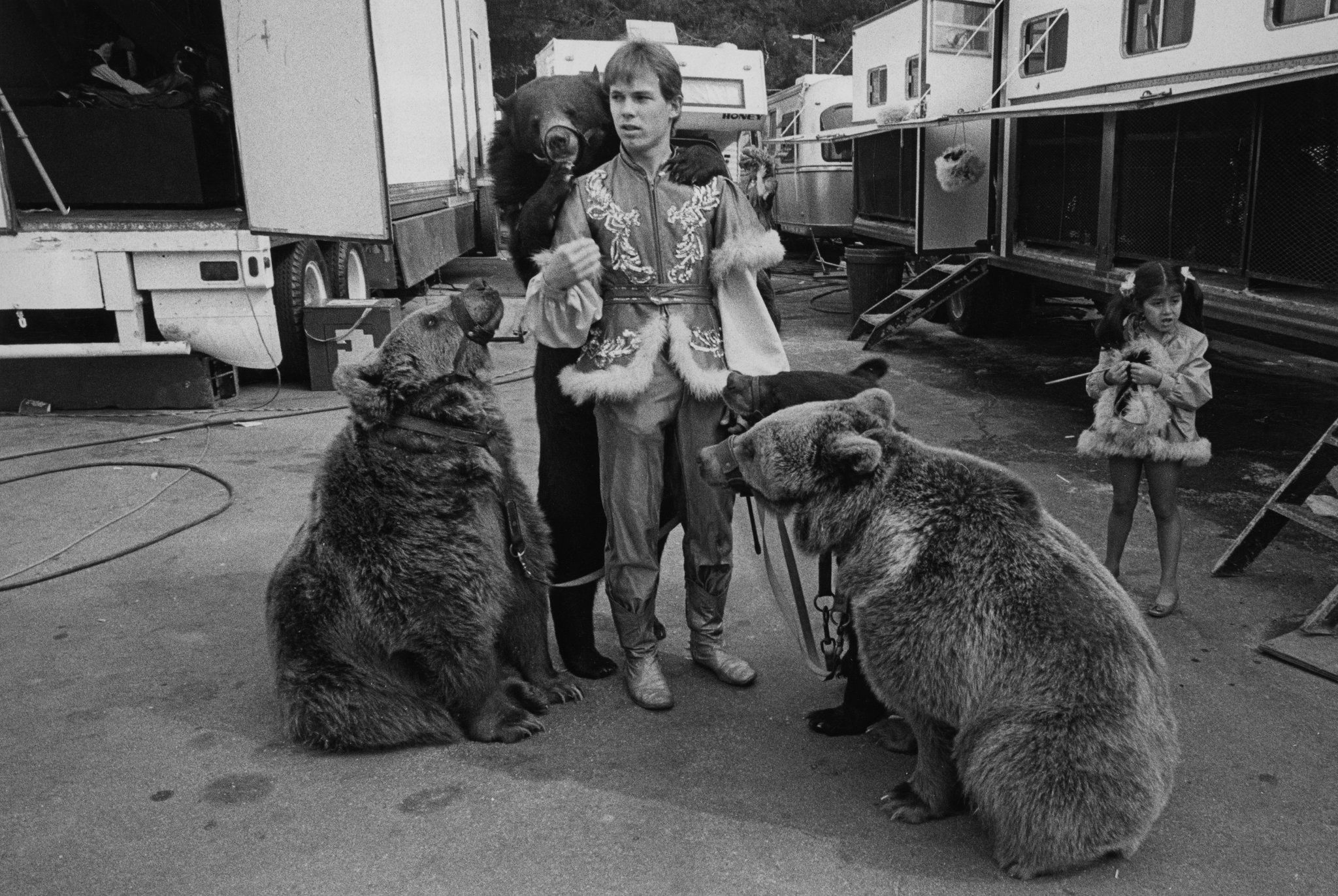 Bears at Circus Vargas in California in 1990 Jill Freedman