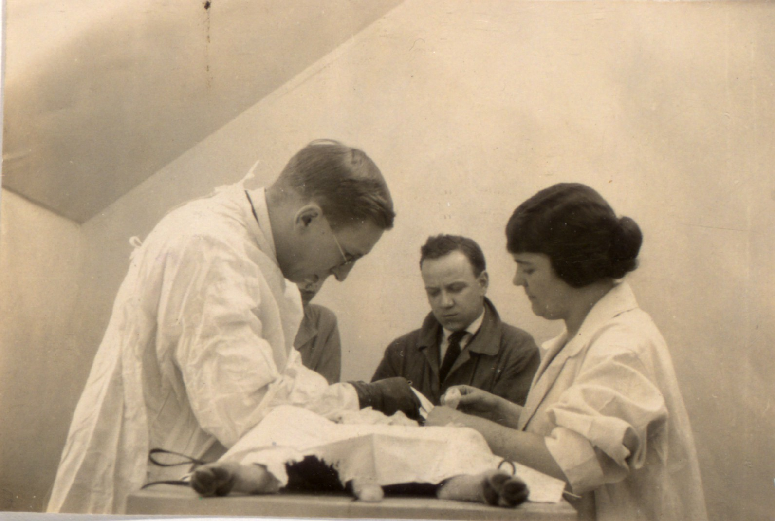 Original black and white photograph showing Banting, assisted by Sadie Gairns, performing surgery on a dog. Unidentified man in background.