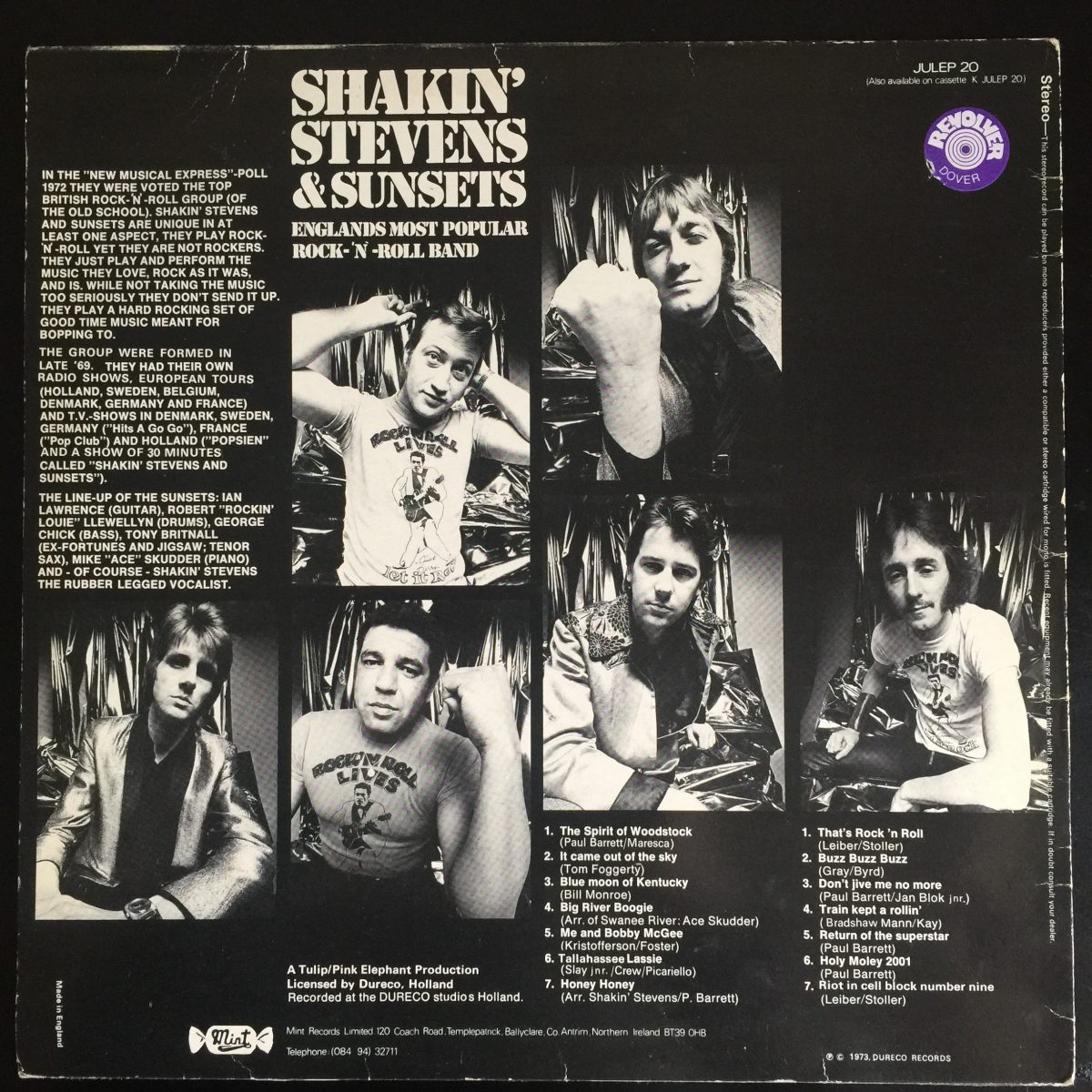 Shakin' Stevens the sunsets