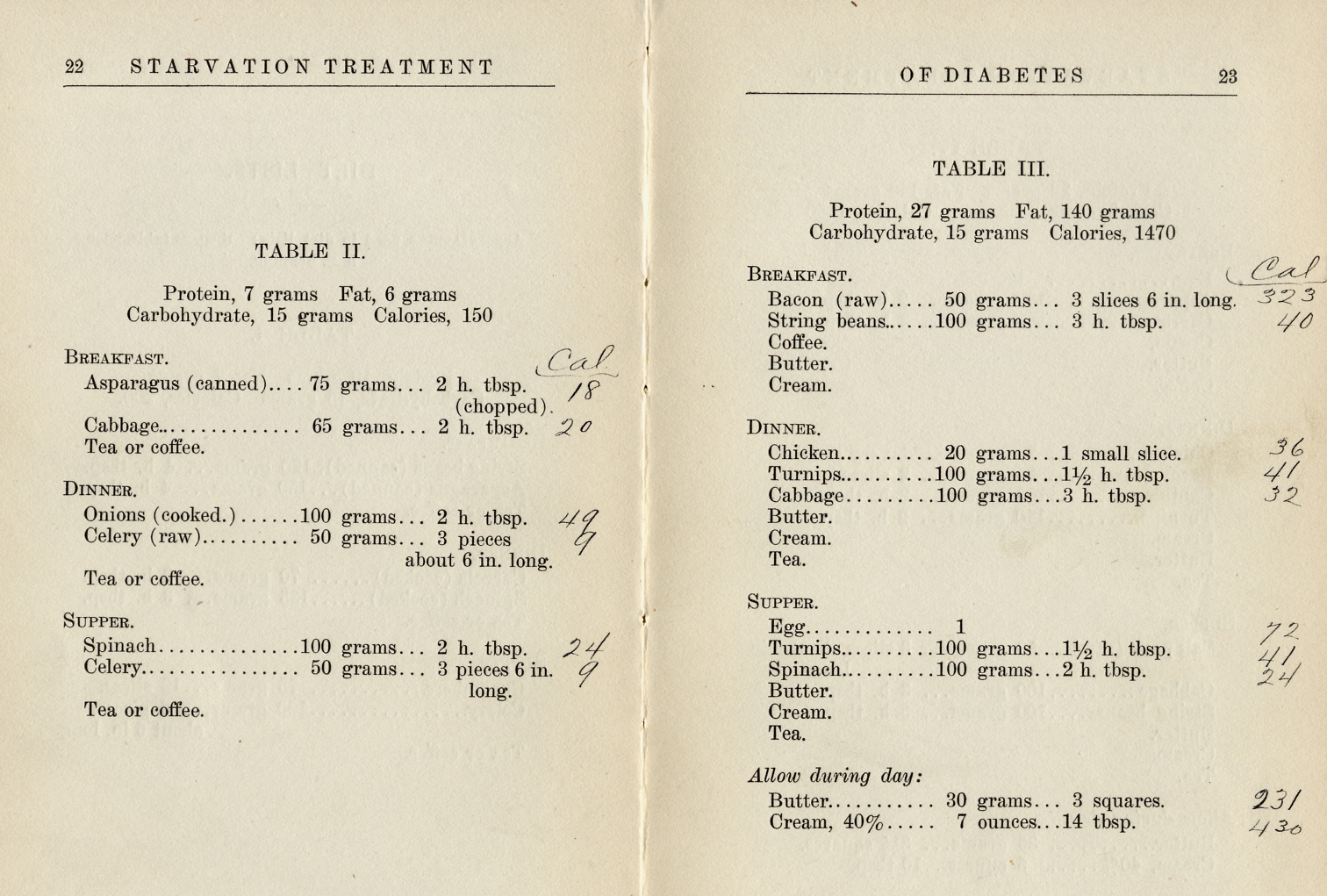 Starvation Diet Detail, from The Starvation Treatment of Diabetes by Lewis Webb Bill, M.D. and Rena S. Eckman, Dietician. 1915.
