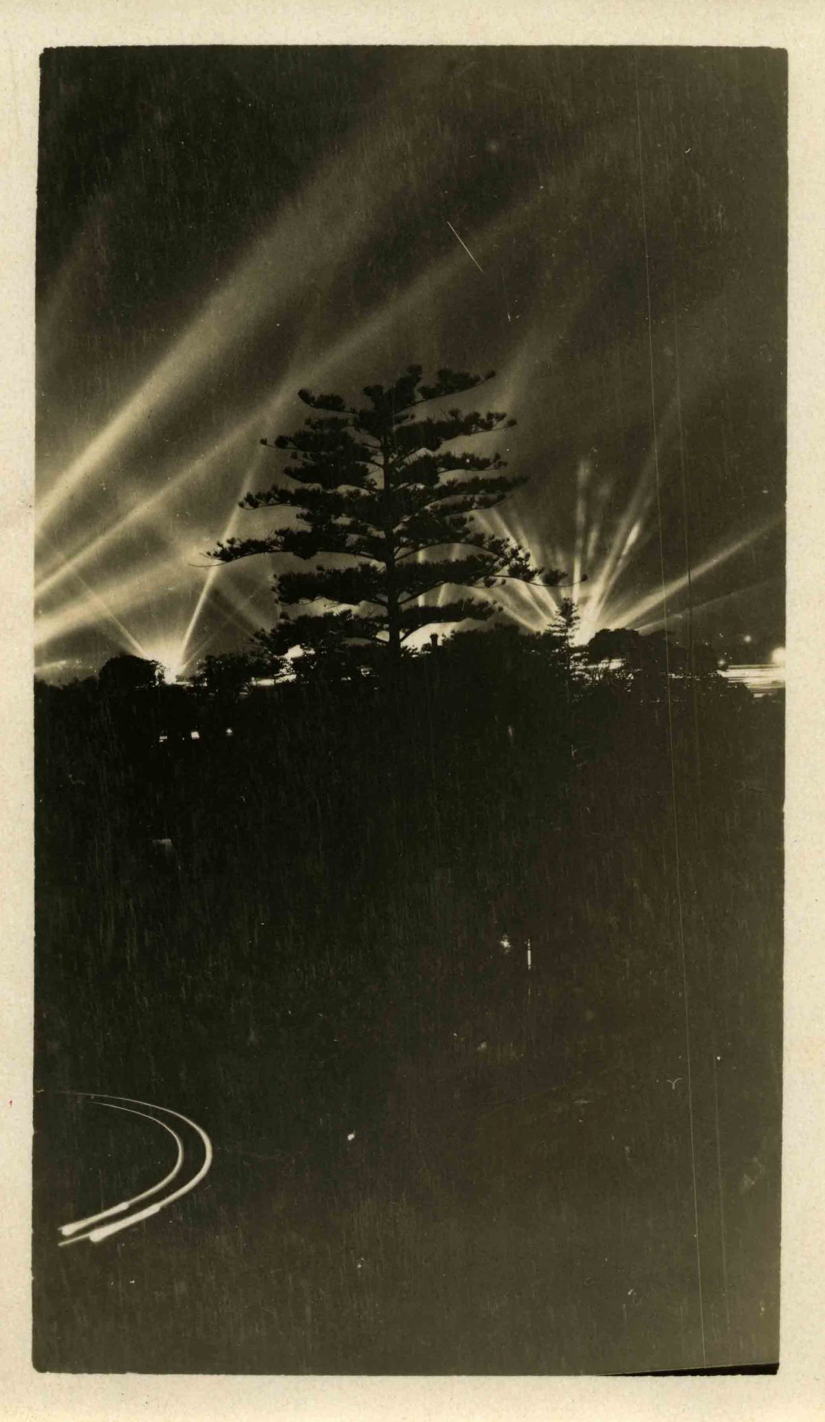 Search lights and trees possibly during the United States Navy visit, 1925