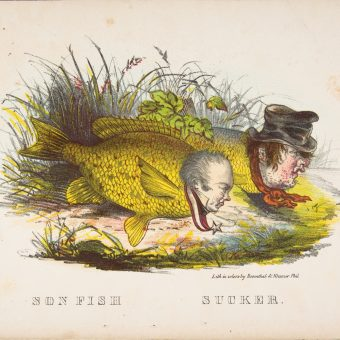 Satirical Illustrations From The Comic Natural History of the Human Race – 1851