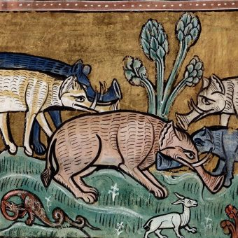 How Medieval Artists Saw Elephants: Claws, Hooves, Trunks Like Trumpets, and Castles on Their Backs
