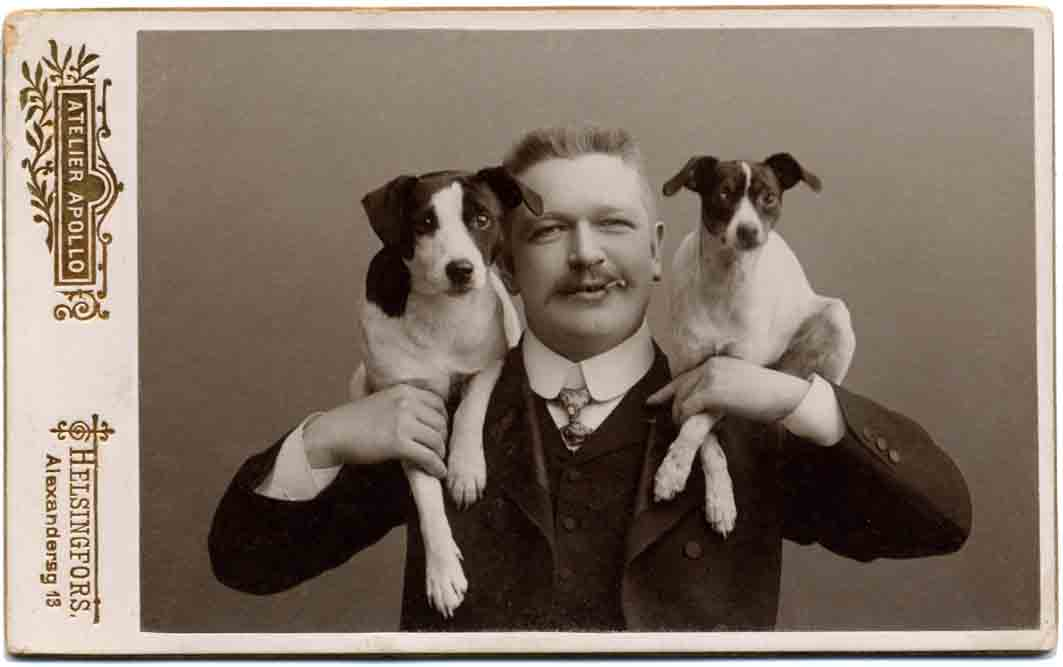 Jack Russell Dogs vintage photographs-27