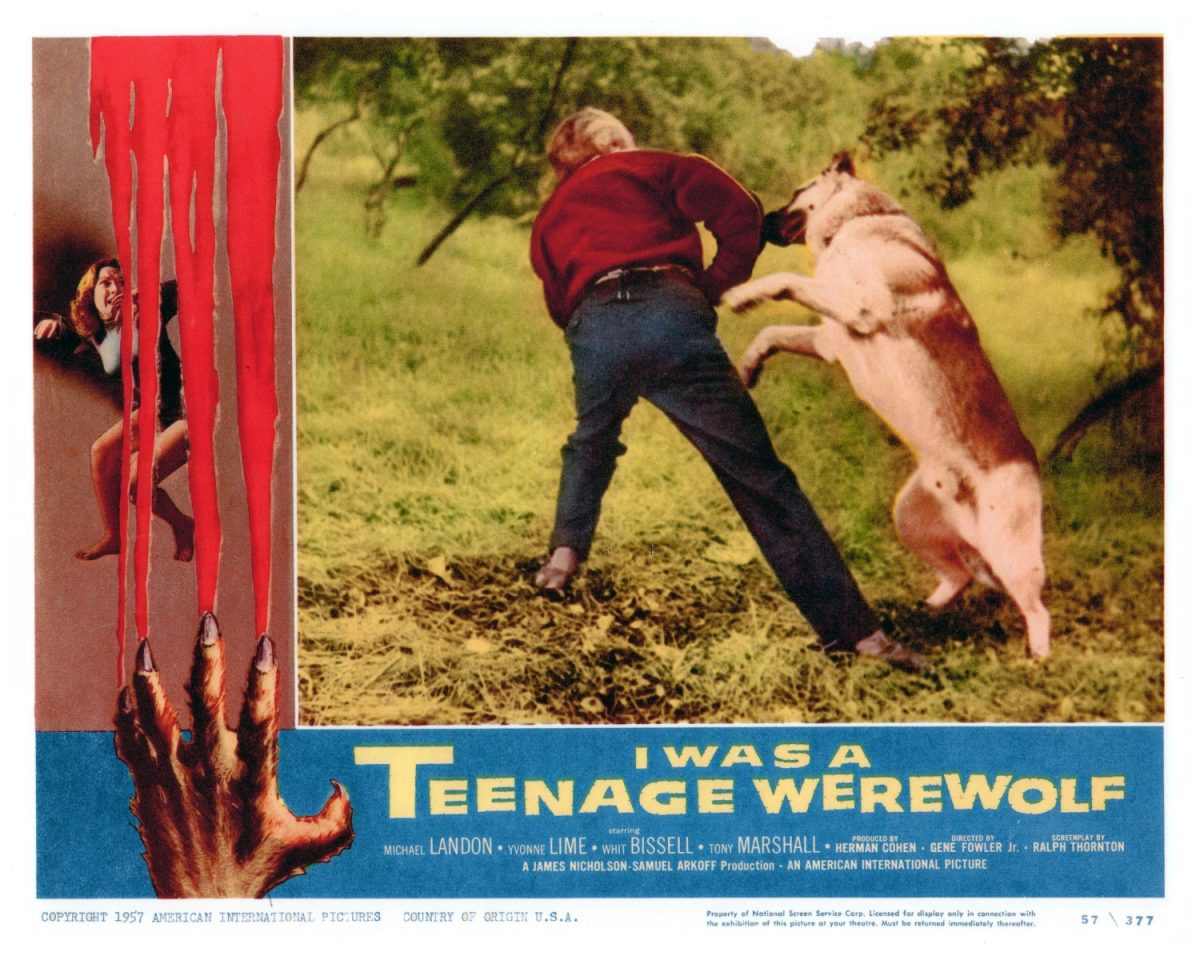 I Was A Teenage Werewolf. Michael Landis, horror, film