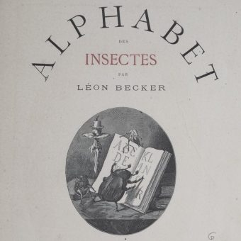 The Insect Alphabet by Léon Becker – 1883