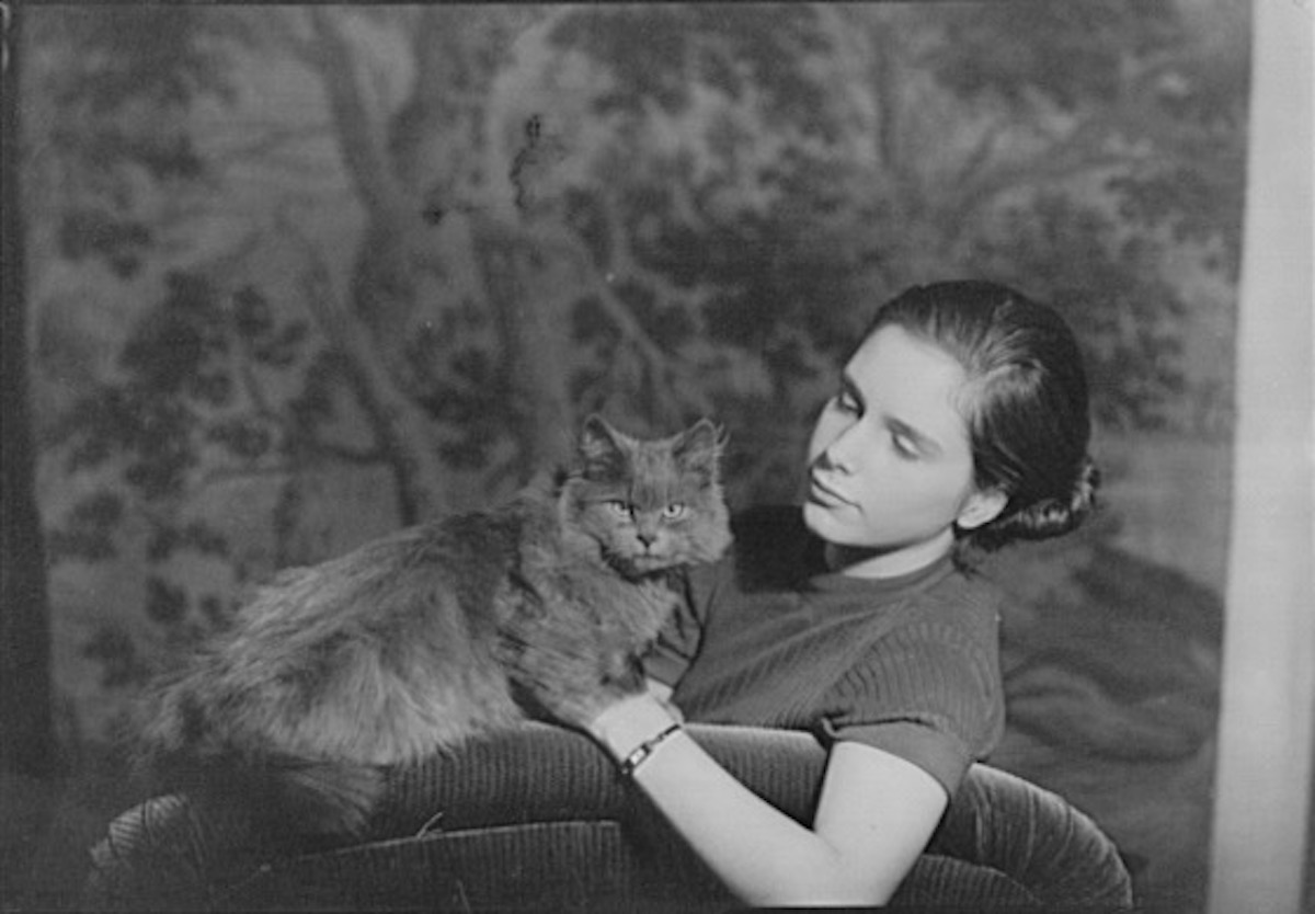 Arnold Genthe's Cat People