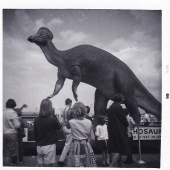 Vintage Snapshots of Dinosaurs