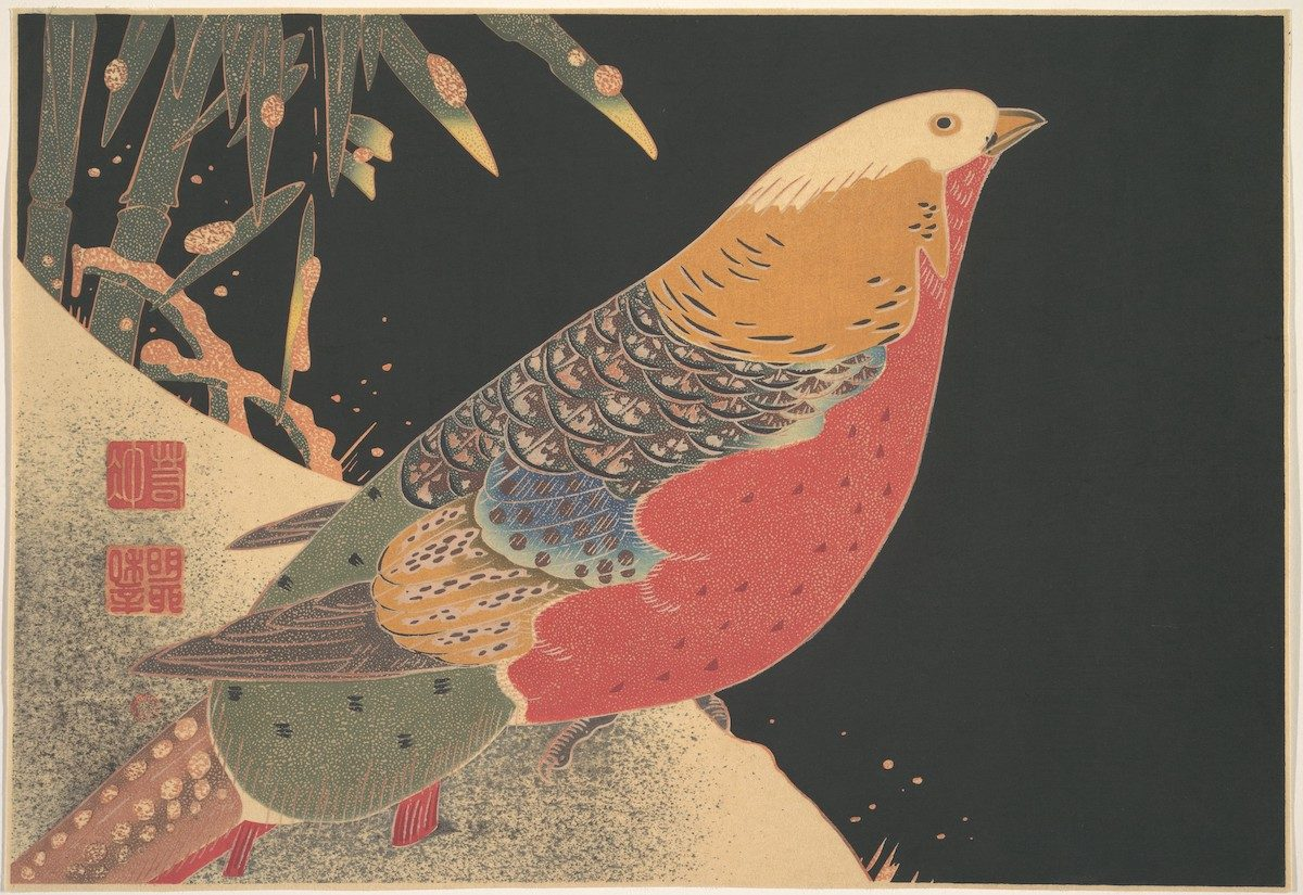 Golden Pheasant in the Snow (ca. 1900) illustration by Ito Jakuchu.
