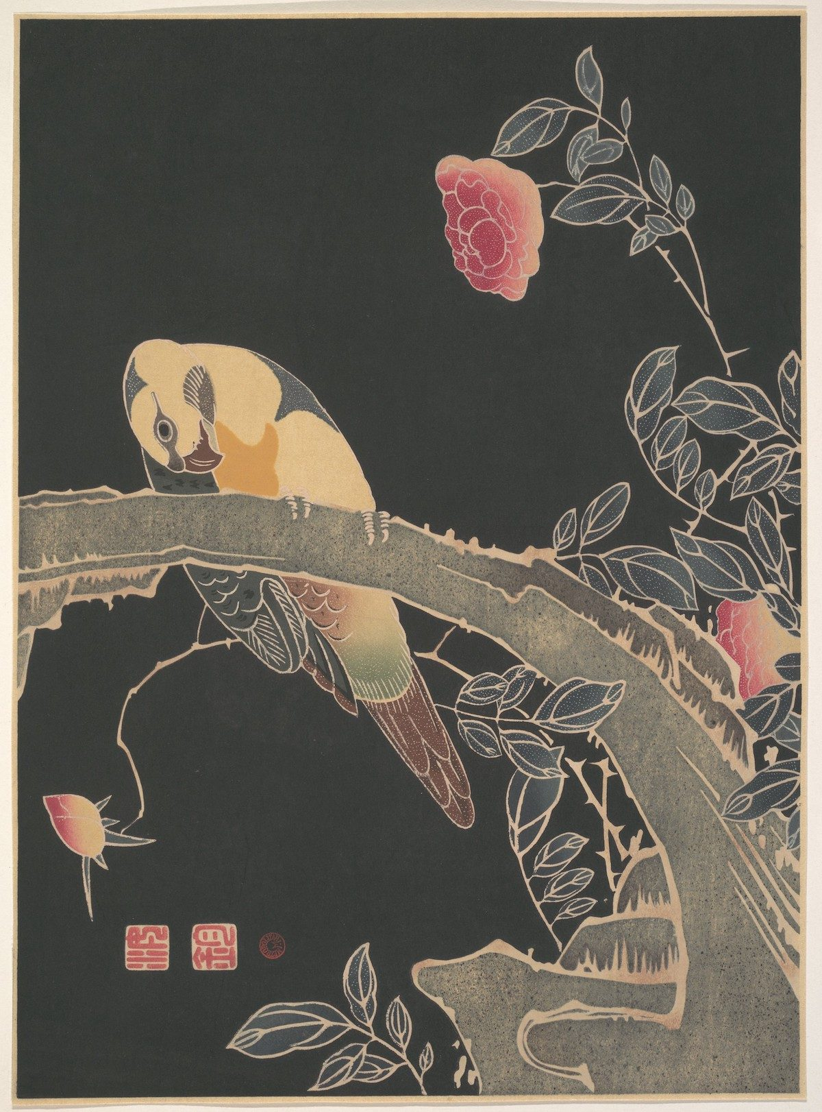 Parrot on the Branch of a Flowering Rose Bush (ca. 1900) illustration by Ito Jakuchu.