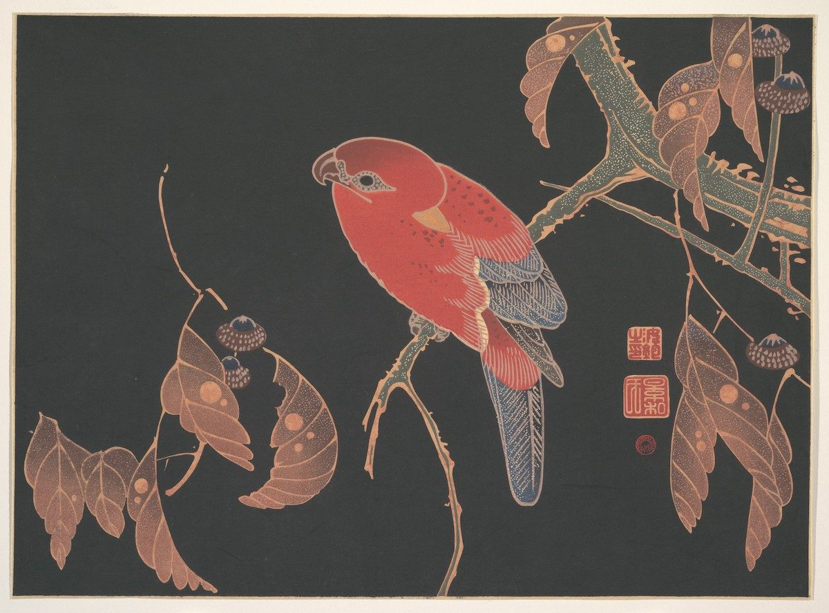 Red Parrot on the Branch of a Tree (ca. 1900) by Ito Jakuchu.